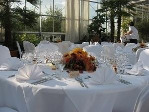 Tisch im Plangarten